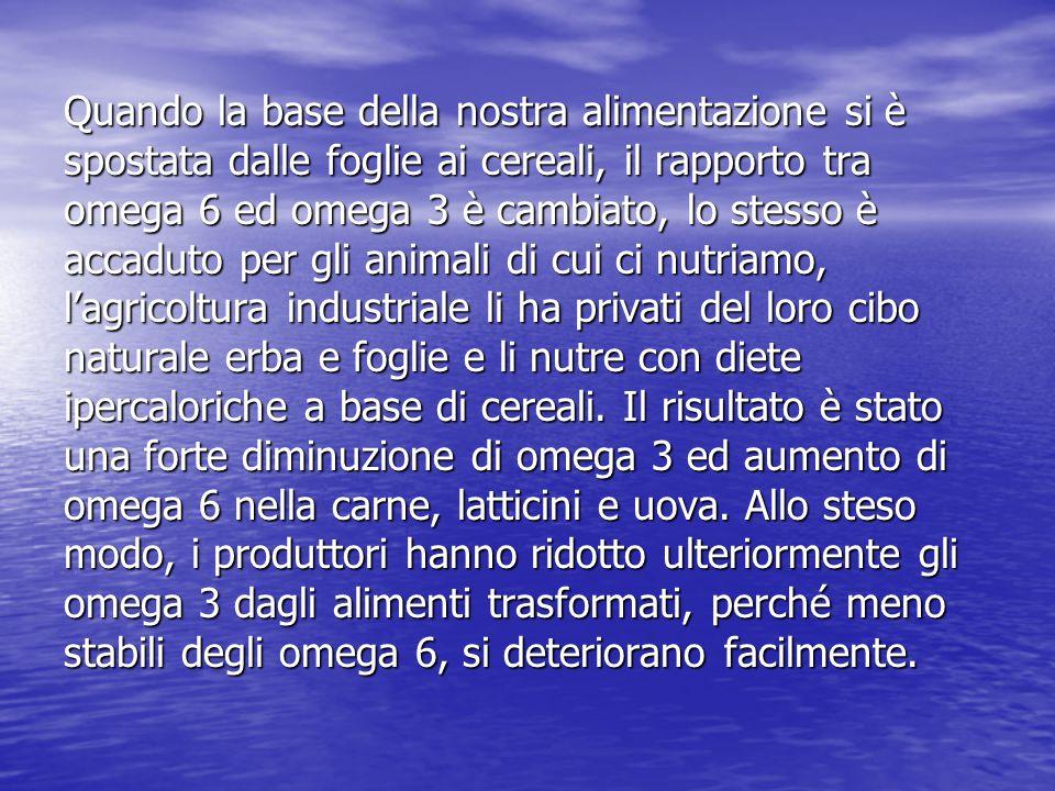 Quando la base della nostra alimentazione si è spostata dalle foglie ai cereali, il rapporto tra omega 6 ed omega 3 è cambiato, lo stesso è accaduto p