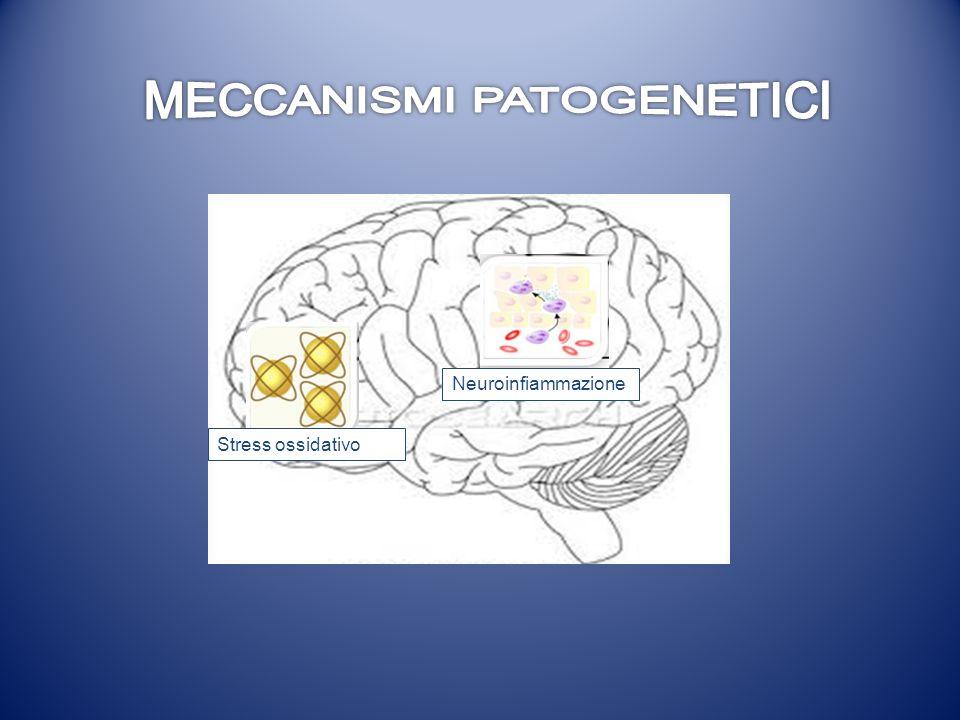 Stress ossidativo Neuroinfiammazione