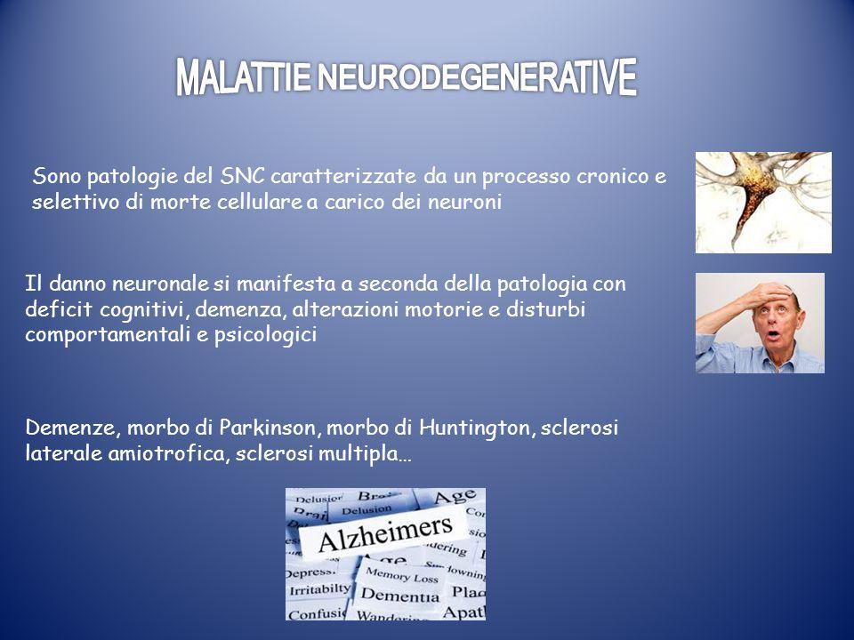 Demenze, morbo di Parkinson, morbo di Huntington, sclerosi laterale amiotrofica, sclerosi multipla… Sono patologie del SNC caratterizzate da un proces