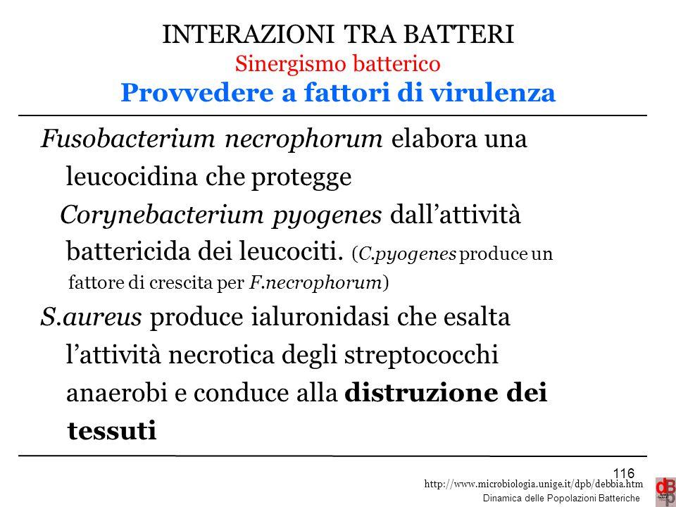 http://www.microbiologia.unige.it/dpb/debbia.htm Dinamica delle Popolazioni Batteriche INTERAZIONI TRA BATTERI Sinergismo batterico Provvedere a fatto