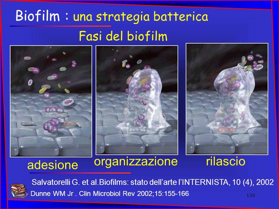 Fasi del biofilm rilascioorganizzazione adesione Salvatorelli G. et al.Biofilms: stato dell'arte l'INTERNISTA, 10 (4), 2002 Biofilm : una strategia ba