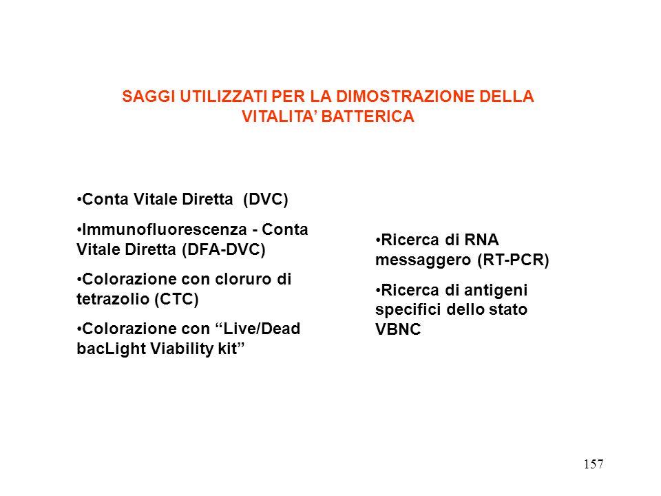 SAGGI UTILIZZATI PER LA DIMOSTRAZIONE DELLA VITALITA' BATTERICA Conta Vitale Diretta (DVC) Immunofluorescenza - Conta Vitale Diretta (DFA-DVC) Coloraz