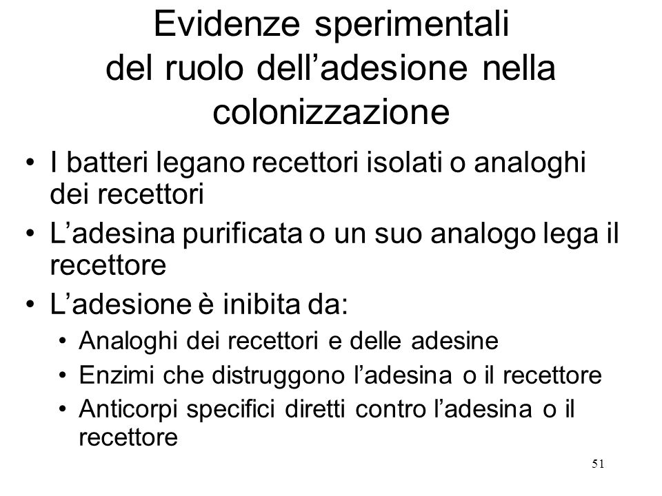 Evidenze sperimentali del ruolo dell'adesione nella colonizzazione I batteri legano recettori isolati o analoghi dei recettori L'adesina purificata o