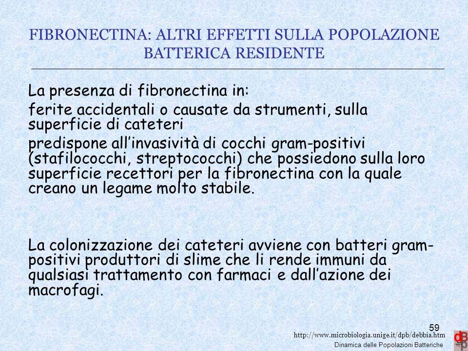 http://www.microbiologia.unige.it/dpb/debbia.htm Dinamica delle Popolazioni Batteriche FIBRONECTINA: ALTRI EFFETTI SULLA POPOLAZIONE BATTERICA RESIDEN