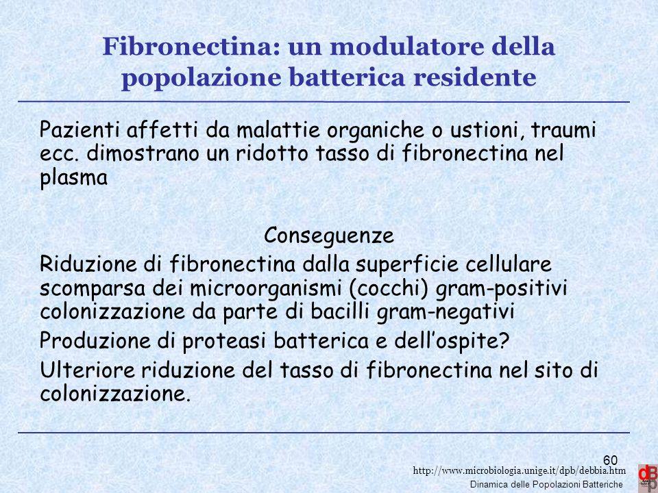 http://www.microbiologia.unige.it/dpb/debbia.htm Dinamica delle Popolazioni Batteriche Fibronectina: un modulatore della popolazione batterica residen