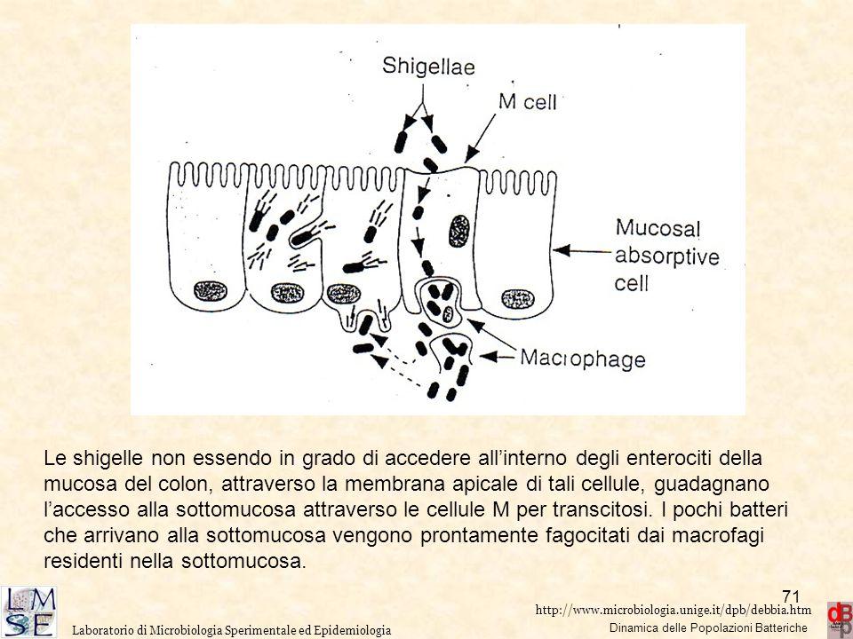 http://www.microbiologia.unige.it/dpb/debbia.htm Dinamica delle Popolazioni Batteriche Laboratorio di Microbiologia Sperimentale ed Epidemiologia Le s