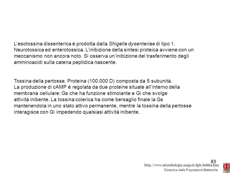 http://www.microbiologia.unige.it/dpb/debbia.htm Dinamica delle Popolazioni Batteriche L'esotossina dissenterica è prodotta dalla Shigella dysenteriae