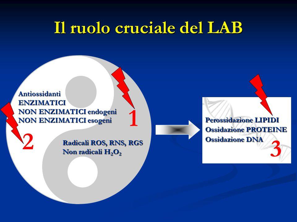 Il ruolo cruciale del LAB Radicali ROS, RNS, RGS Non radicali H 2 O 2 AntiossidantiENZIMATICI NON ENZIMATICI endogeni NON ENZIMATICI esogeni Perossidazione LIPIDI Ossidazione PROTEINE Ossidazione DNA 1 2 3