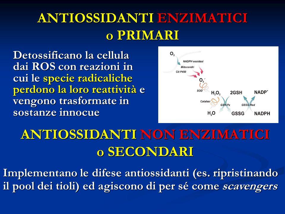 ANTIOSSIDANTI ENZIMATICI o PRIMARI Detossificano la cellula dai ROS con reazioni in cui le specie radicaliche perdono la loro reattività e vengono trasformate in sostanze innocue ANTIOSSIDANTI NON ENZIMATICI o SECONDARI Implementano le difese antiossidanti (es.