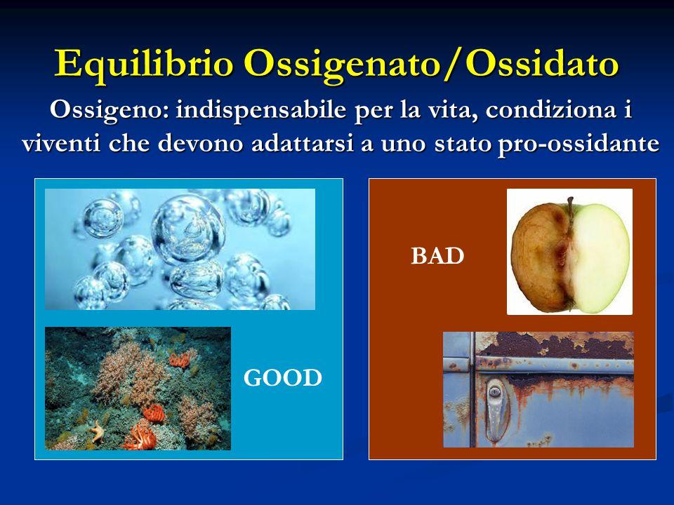 Equilibrio Ossigenato/Ossidato Ossigeno: indispensabile per la vita, condiziona i viventi che devono adattarsi a uno stato pro-ossidante GOOD BAD