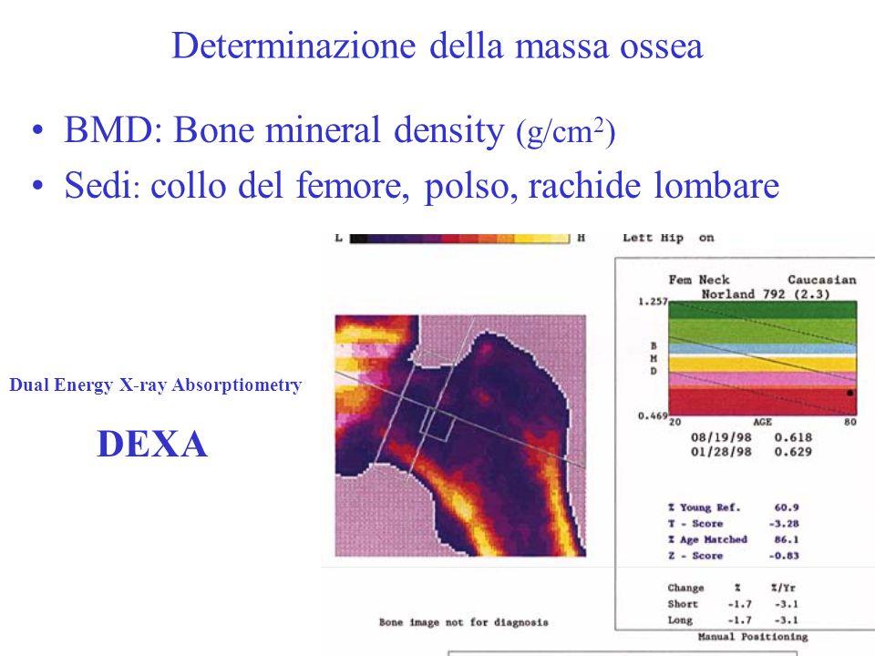 Determinazione della massa ossea BMD: Bone mineral density (g/cm 2 ) Sedi : collo del femore, polso, rachide lombare Dual Energy X-ray Absorptiometry