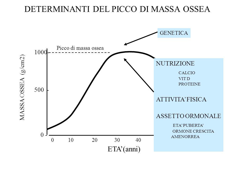 0 10 20 30 40 50 60 MASSA OSSEA (g/cm2) ETA'(anni) 1000- 500 - 0 - Picco di massa ossea DETERMINANTI DEL PICCO DI MASSA OSSEA GENETICA NUTRIZIONE CALC