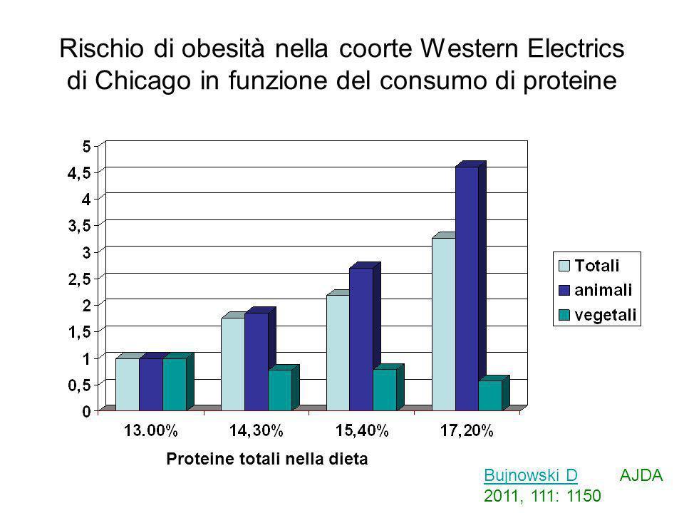 Rischio di obesità nella coorte Western Electrics di Chicago in funzione del consumo di proteine Proteine totali nella dieta Bujnowski DBujnowski D AJ