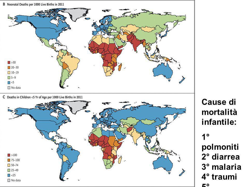 Nutrire il pianeta significa permettere ad un miliardo di affamati di sfamarsi e ad un miliardo di obesi di risanarsi.