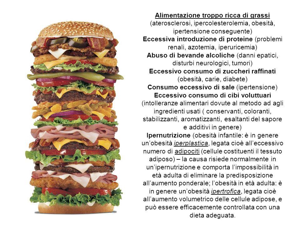 Alimentazione troppo ricca di grassi (aterosclerosi, ipercolesterolemia, obesità, ipertensione conseguente) Eccessiva introduzione di proteine (proble