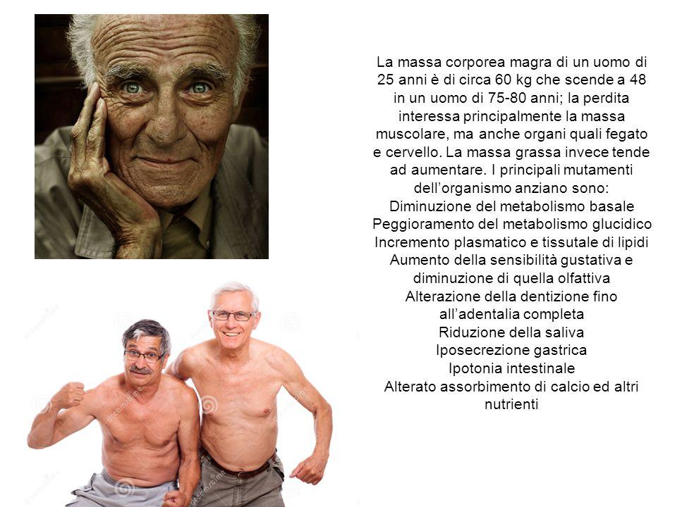 La massa corporea magra di un uomo di 25 anni è di circa 60 kg che scende a 48 in un uomo di 75-80 anni; la perdita interessa principalmente la massa