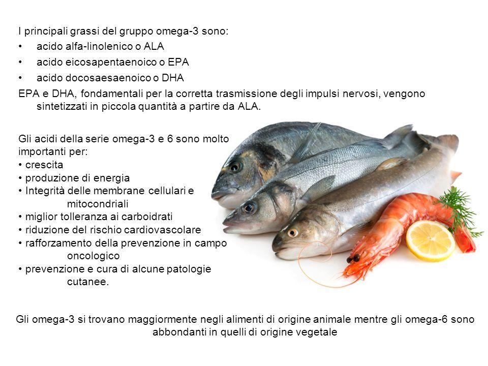 I principali grassi del gruppo omega-3 sono: acido alfa-linolenico o ALA acido eicosapentaenoico o EPA acido docosaesaenoico o DHA EPA e DHA, fondamen