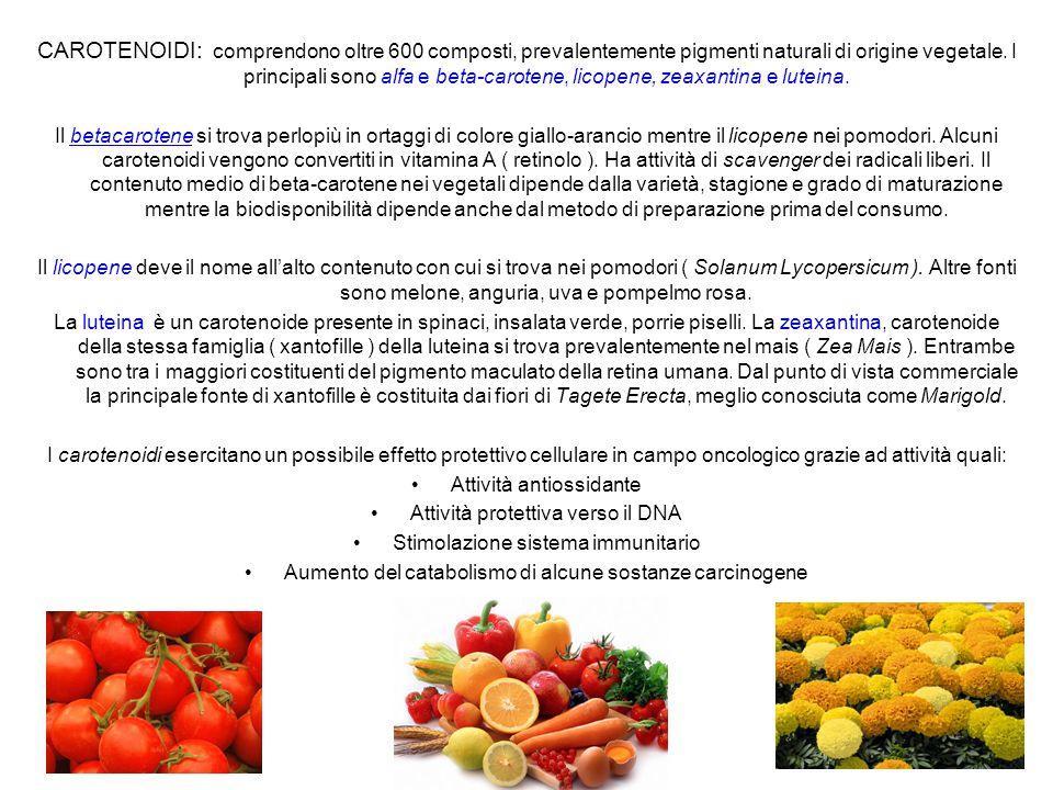 CAROTENOIDI: comprendono oltre 600 composti, prevalentemente pigmenti naturali di origine vegetale. I principali sono alfa e beta-carotene, licopene,