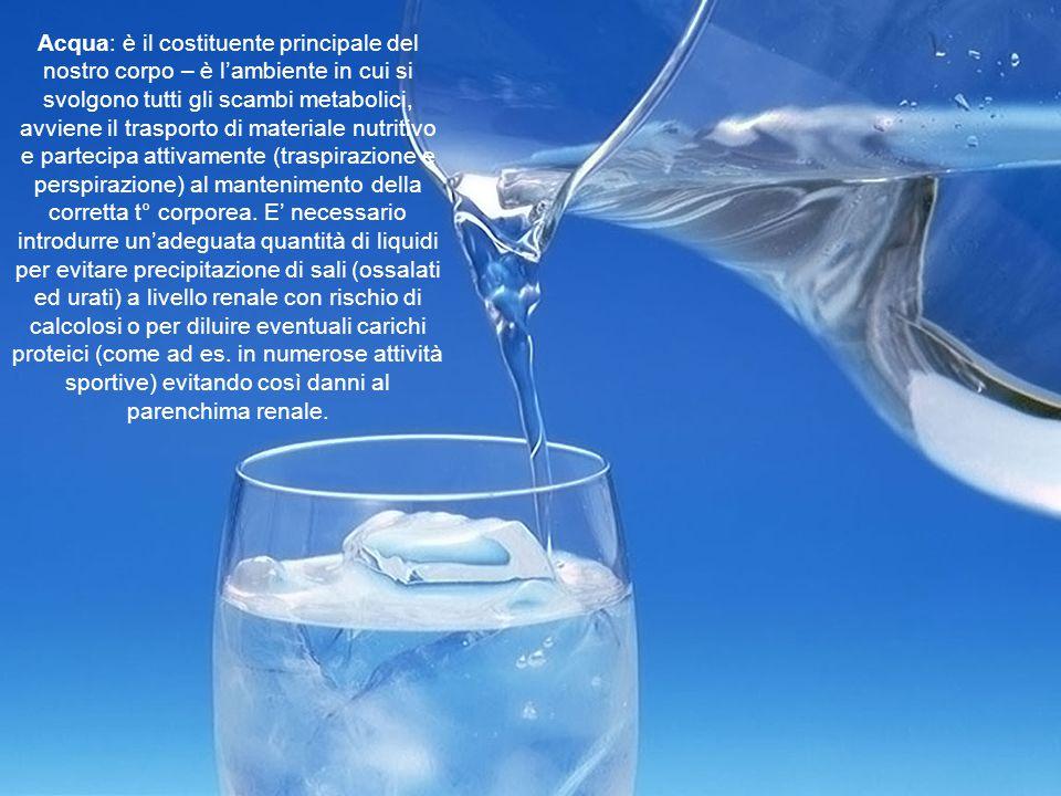 Acqua: è il costituente principale del nostro corpo – è l'ambiente in cui si svolgono tutti gli scambi metabolici, avviene il trasporto di materiale n