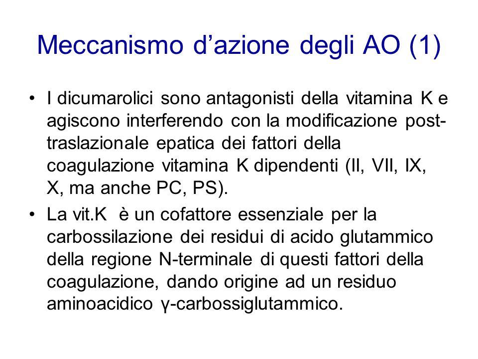 Meccanismo d'azione degli AO (1) I dicumarolici sono antagonisti della vitamina K e agiscono interferendo con la modificazione post- traslazionale epa