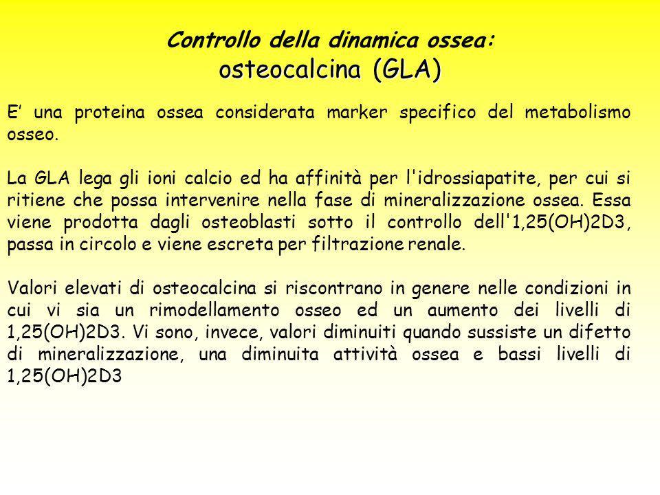 Controllo della dinamica ossea: osteocalcina (GLA) E' una proteina ossea considerata marker specifico del metabolismo osseo. La GLA lega gli ioni calc