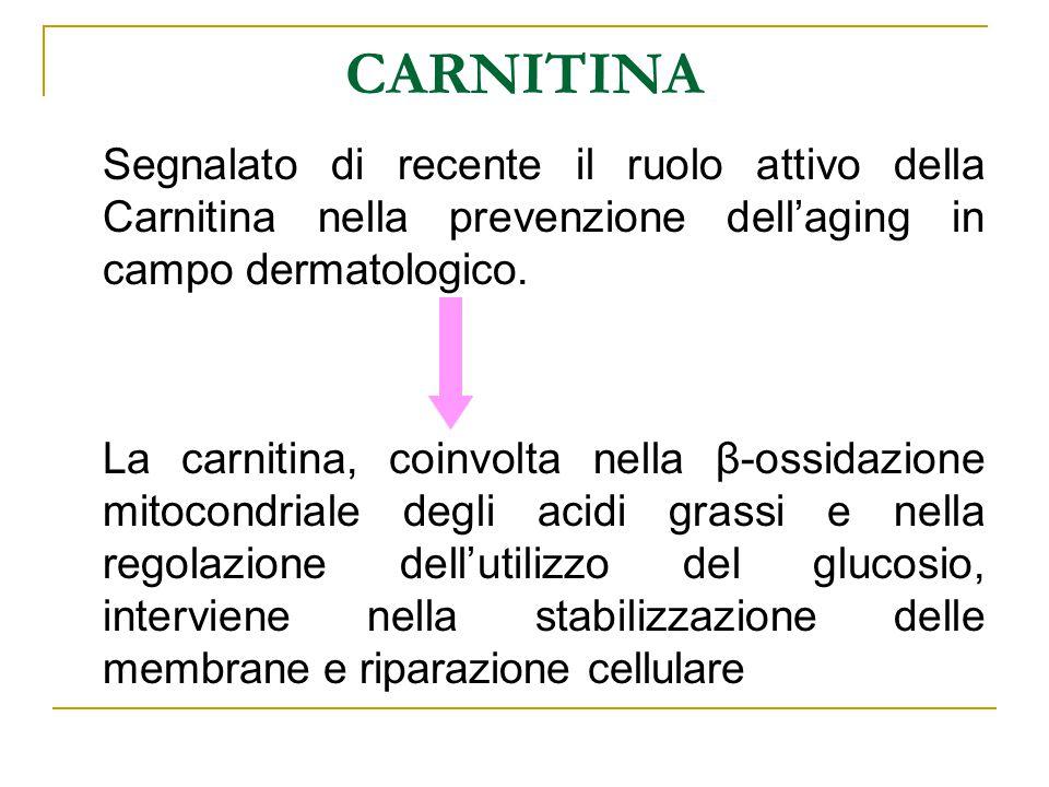 CARNITINA Segnalato di recente il ruolo attivo della Carnitina nella prevenzione dell'aging in campo dermatologico. La carnitina, coinvolta nella β-os