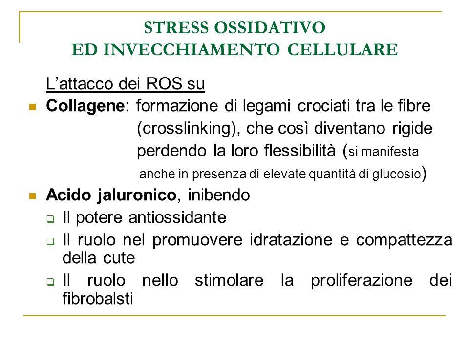 STRESS OSSIDATIVO ED INVECCHIAMENTO CELLULARE L'attacco dei ROS su Collagene: formazione di legami crociati tra le fibre (crosslinking), che così dive
