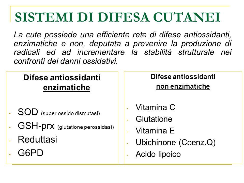 SISTEMI DI DIFESA CUTANEI Difese antiossidanti enzimatiche - SOD (super ossido dismutasi) - GSH-prx (glutatione perossidasi) - Reduttasi - G6PD Difese