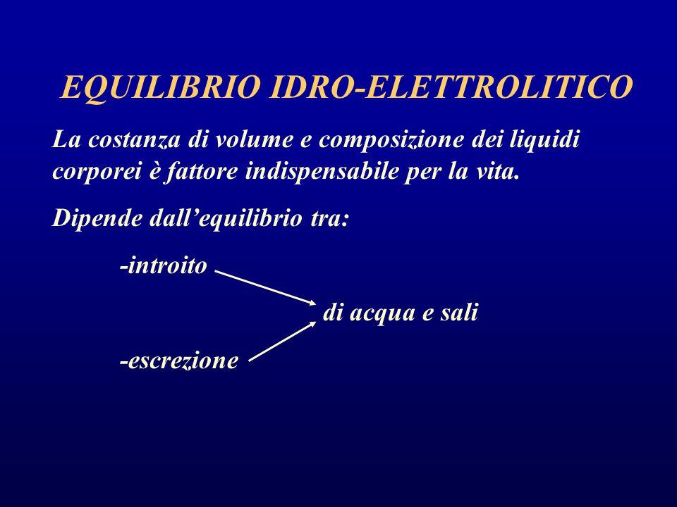 EQUILIBRIO IDRO-ELETTROLITICO Acqua: costituisce circa il 50-60% del peso corporeo 35-40% acqua intracellulare15-20% acqua extracellulare (plasma + liquido interstiziale) Cationi Na 12 mEq/l K 150 mEq/l Ca 4 mEq/l Mg 34mEq/l Anioni Cl 4 mEq/l HCO 3 12 mEq/l HPO 4 40mEq/l Proteine 54mEq/l Altri 90 mEq/l Cationi Na 142 mEq/l K 4,3 mEq/l Ca 2,5 mEq/l Mg 1,1mEq/l Anioni Cl 104 mEq/l HCO 3 24 mEq/l HPO 4 2mEq/l Proteine 14mEq/l Altri 5,9 mEq/l