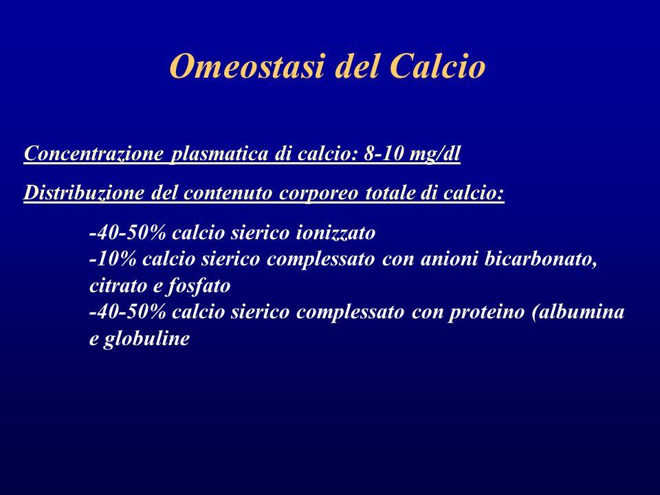 Omeostasi del Calcio Concentrazione plasmatica di calcio: 8-10 mg/dl Distribuzione del contenuto corporeo totale di calcio: -40-50% calcio sierico ionizzato -10% calcio sierico complessato con anioni bicarbonato, citrato e fosfato -40-50% calcio sierico complessato con proteino (albumina e globuline