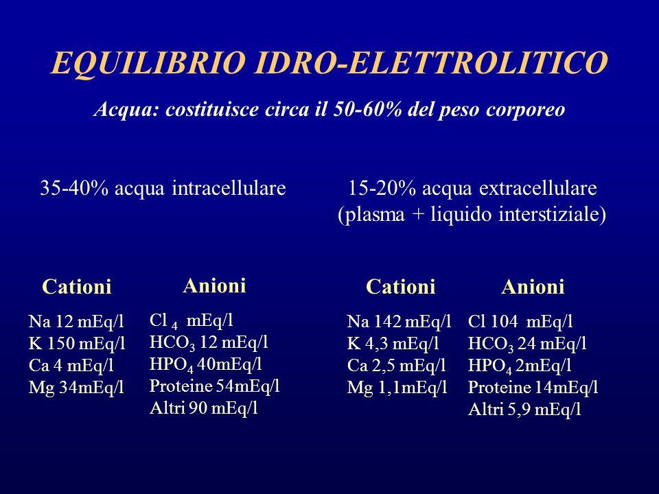 EQUILIBRIO IDRO-ELETTROLITICO Acqua: costituisce circa il 50-60% del peso corporeo 35-40% acqua intracellulare15-20% acqua extracellulare (plasma + li