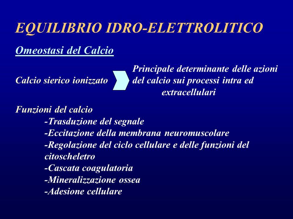 EQUILIBRIO IDRO-ELETTROLITICO Omeostasi del Calcio Principale determinante delle azioni Calcio sierico ionizzato del calcio sui processi intra ed extr