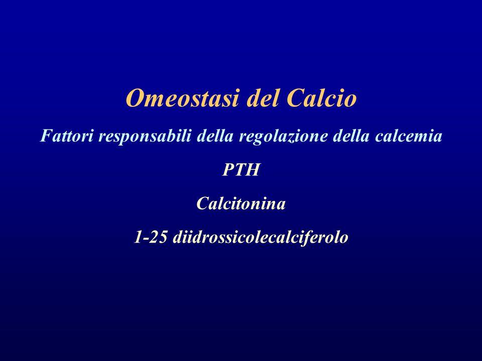 Omeostasi del Calcio Fattori responsabili della regolazione della calcemia PTH Calcitonina 1-25 diidrossicolecalciferolo