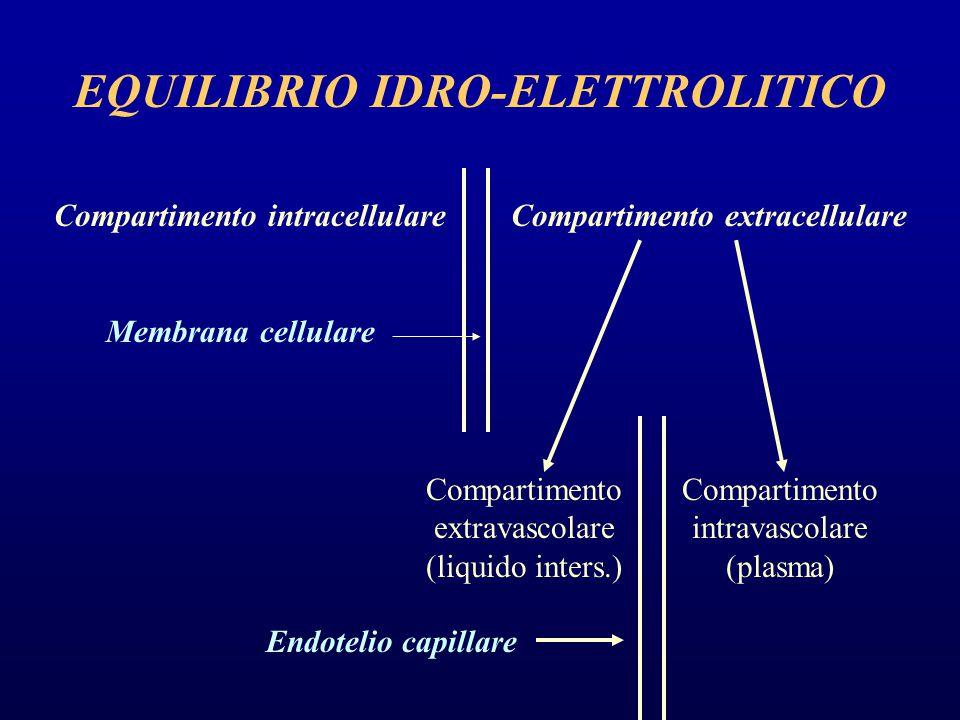 EQUILIBRIO IDRO-ELETTROLITICO Compartimento intracellulare Compartimento extracellulare Membrana cellulare Compartimento extravascolare (liquido inters.) Compartimento intravascolare (plasma) Endotelio capillare