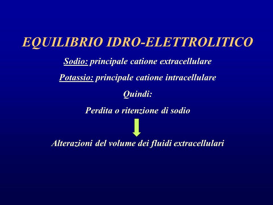 EQUILIBRIO IDRO-ELETTROLITICO Sodio: principale catione extracellulare Potassio: principale catione intracellulare Quindi: Perdita o ritenzione di sodio Alterazioni del volume dei fluidi extracellulari