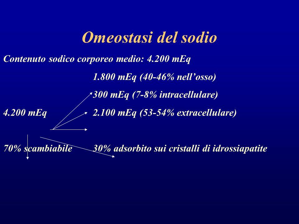 Omeostasi del sodio Contenuto sodico corporeo medio: 4.200 mEq 1.800 mEq (40-46% nell'osso) 300 mEq (7-8% intracellulare) 4.200 mEq2.100 mEq (53-54% extracellulare) 70% scambiabile30% adsorbito sui cristalli di idrossiapatite