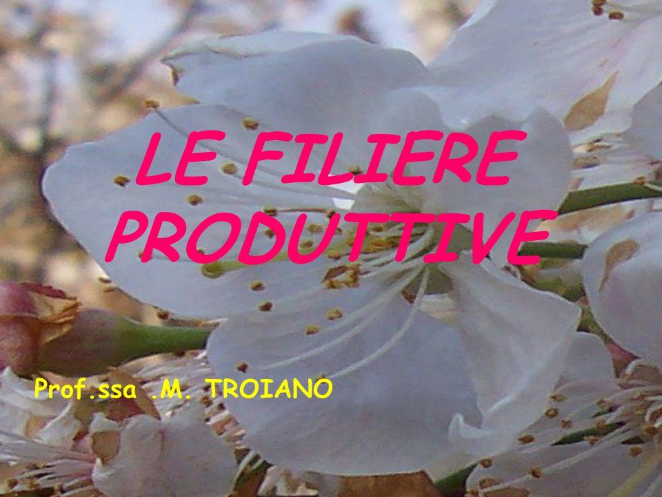 LE FILIERE PRODUTTIVE Prof.ssa.M. TROIANO