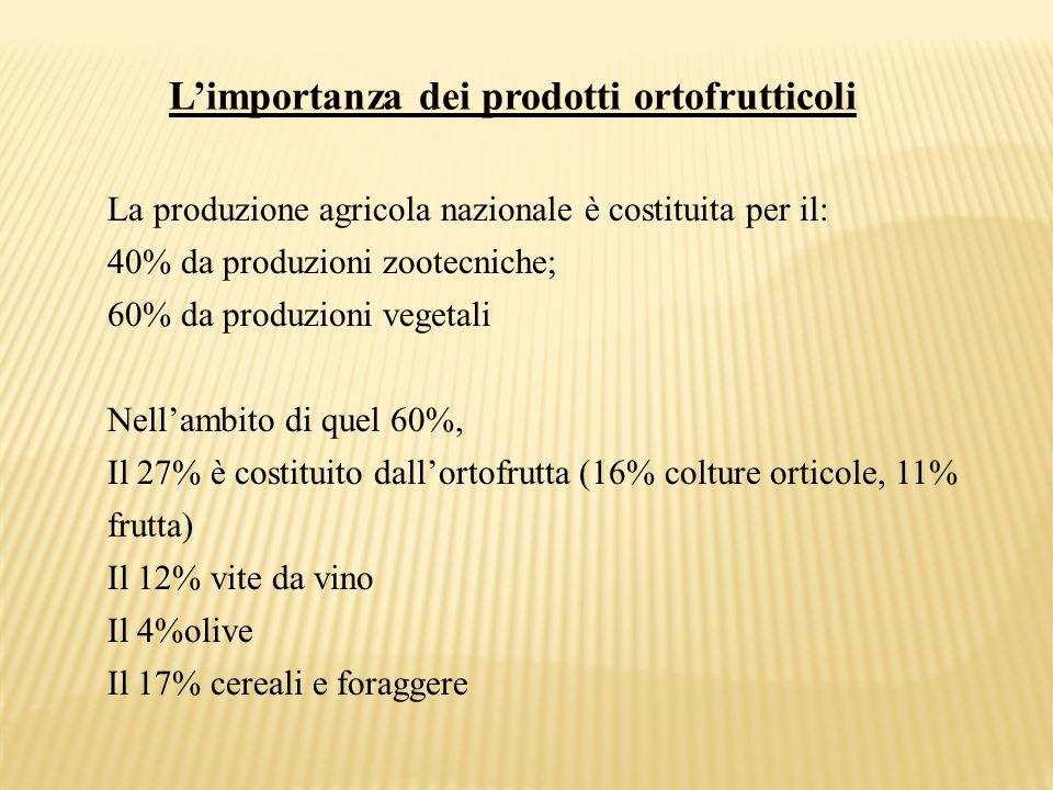 L'importanza dei prodotti ortofrutticoli La produzione agricola nazionale è costituita per il: 40% da produzioni zootecniche; 60% da produzioni vegeta