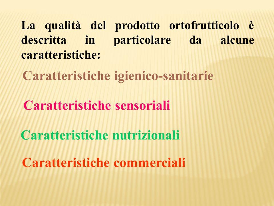 La qualità del prodotto ortofrutticolo è descritta in particolare da alcune caratteristiche: Caratteristiche igienico-sanitarie Caratteristiche sensor