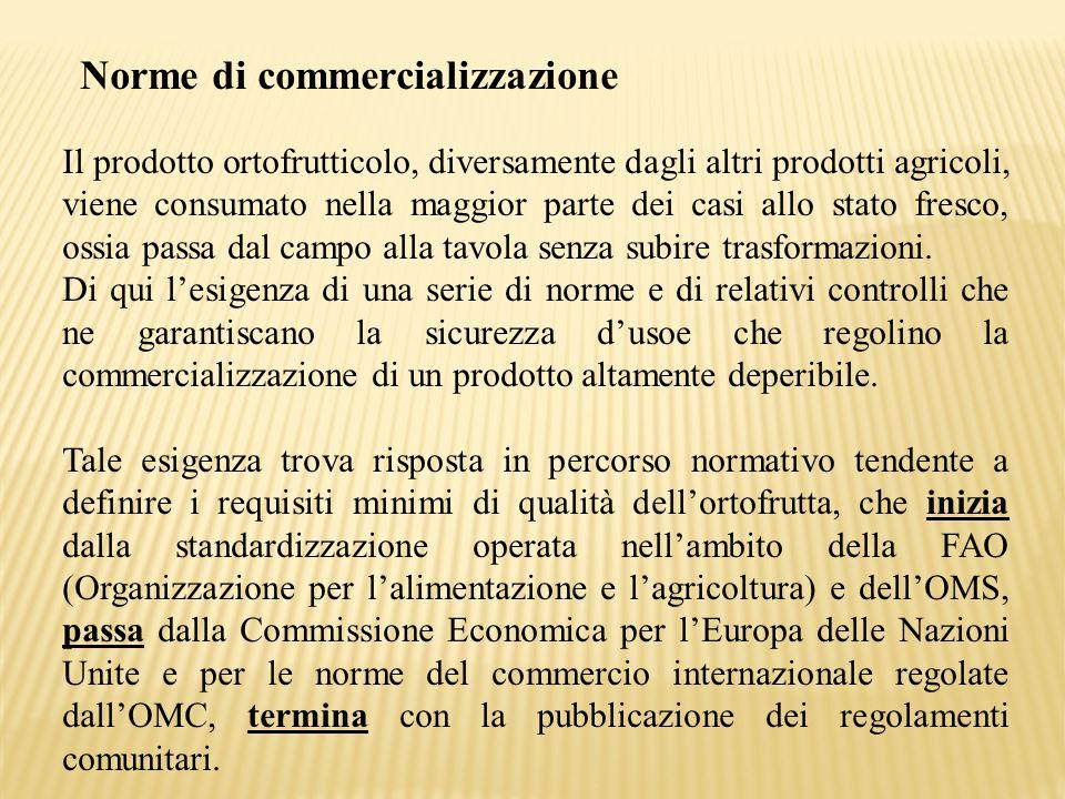 Norme di commercializzazione Il prodotto ortofrutticolo, diversamente dagli altri prodotti agricoli, viene consumato nella maggior parte dei casi allo