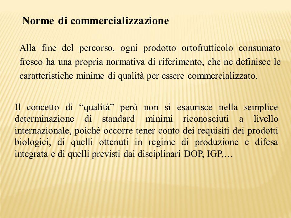Norme di commercializzazione Alla fine del percorso, ogni prodotto ortofrutticolo consumato fresco ha una propria normativa di riferimento, che ne def