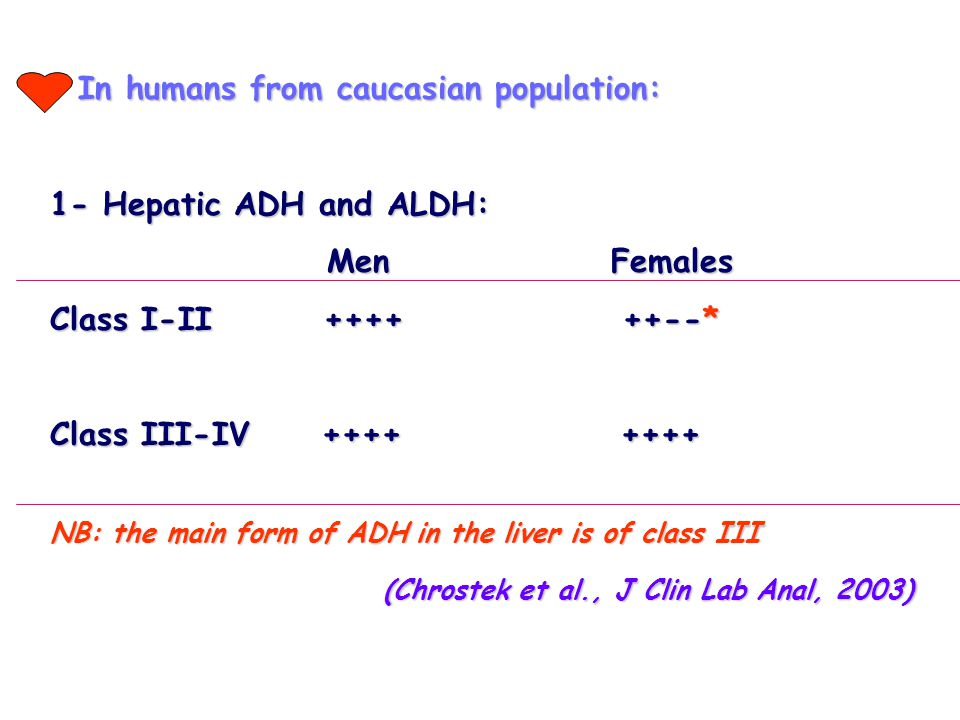 In humans from caucasian population: In humans from caucasian population: 1- Hepatic ADH and ALDH: Men Females Men Females Class I-II ++++ ++--* Class III-IV ++++ ++++ NB: the main form of ADH in the liver is of class III (Chrostek et al., J Clin Lab Anal, 2003) (Chrostek et al., J Clin Lab Anal, 2003)