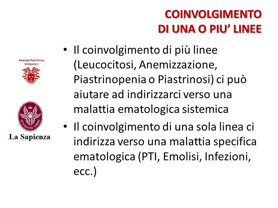 COINVOLGIMENTO DI UNA O PIU' LINEE Il coinvolgimento di più linee (Leucocitosi, Anemizzazione, Piastrinopenia o Piastrinosi) ci può aiutare ad indiriz