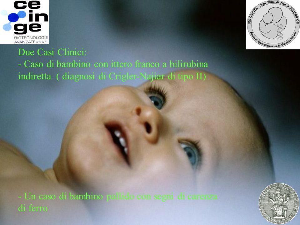 . Due Casi Clinici: - Caso di bambino con ittero franco a bilirubina indiretta ( diagnosi di Crigler-Najiar di tipo II) - Un caso di bambino pallido con segni di carenza di ferro