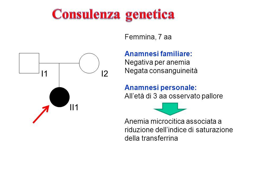 I1I2 II1 Femmina, 7 aa Anamnesi familiare: Negativa per anemia Negata consanguineità Anamnesi personale: All'età di 3 aa osservato pallore Anemia microcitica associata a riduzione dell'indice di saturazione della transferrina