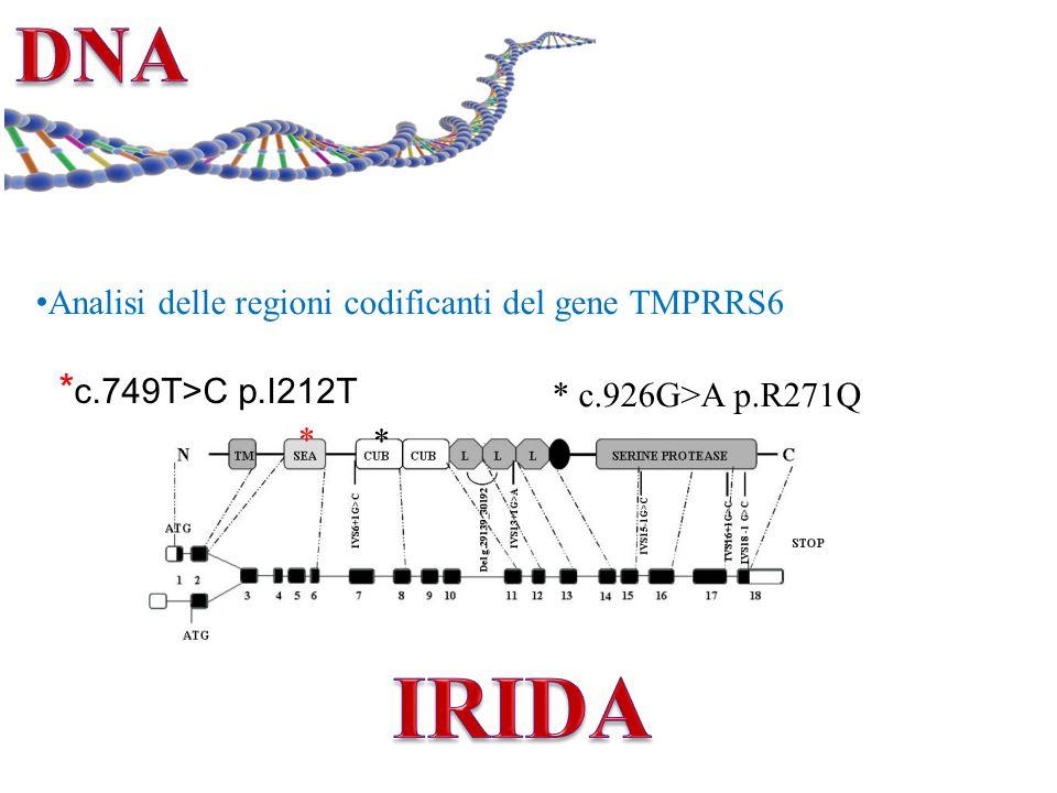 Analisi delle regioni codificanti del gene TMPRRS6 * c.749T>C p.I212T * c.926G>A p.R271Q * *