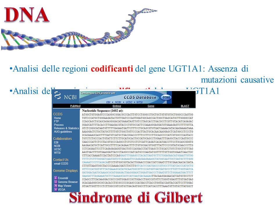 Analisi delle regioni codificanti del gene UGT1A1: Assenza di mutazioni causative Analisi delle regioni non codificanti del gene UGT1A1 Paziente (TA)7/7 Ctrl (TA)6/7Ctrl (TA)7/7Ctrl (TA)6/6