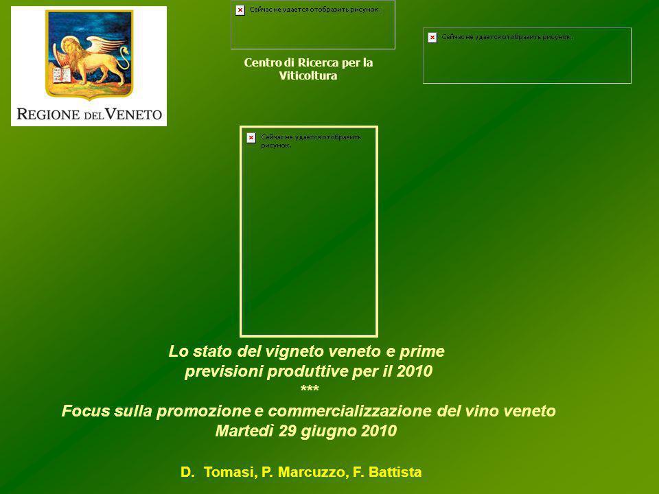 Lo stato del vigneto veneto e prime previsioni produttive per il 2010 *** Focus sulla promozione e commercializzazione del vino veneto Martedì 29 giugno 2010 Centro di Ricerca per la Viticoltura D.