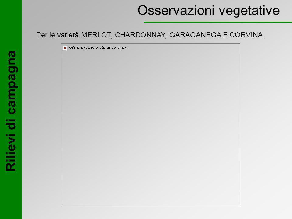 Osservazioni vegetative Per le varietà MERLOT, CHARDONNAY, GARAGANEGA E CORVINA.
