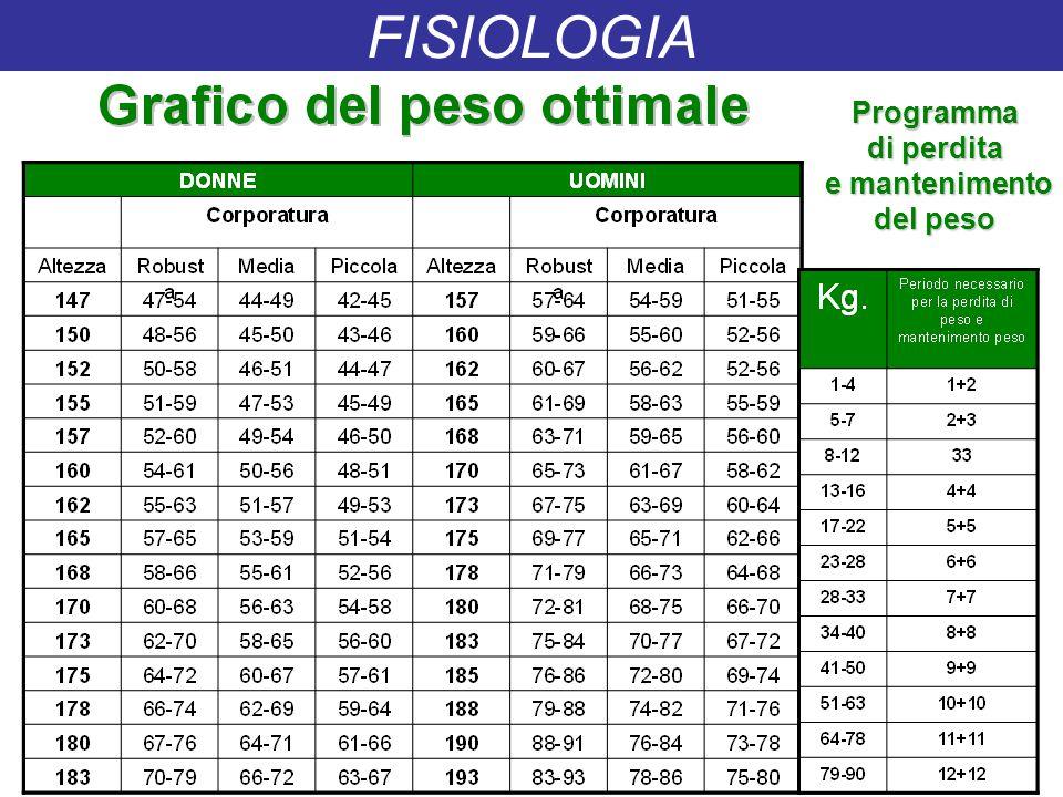 Programma di perdita e mantenimento e mantenimento del peso FISIOLOGIA
